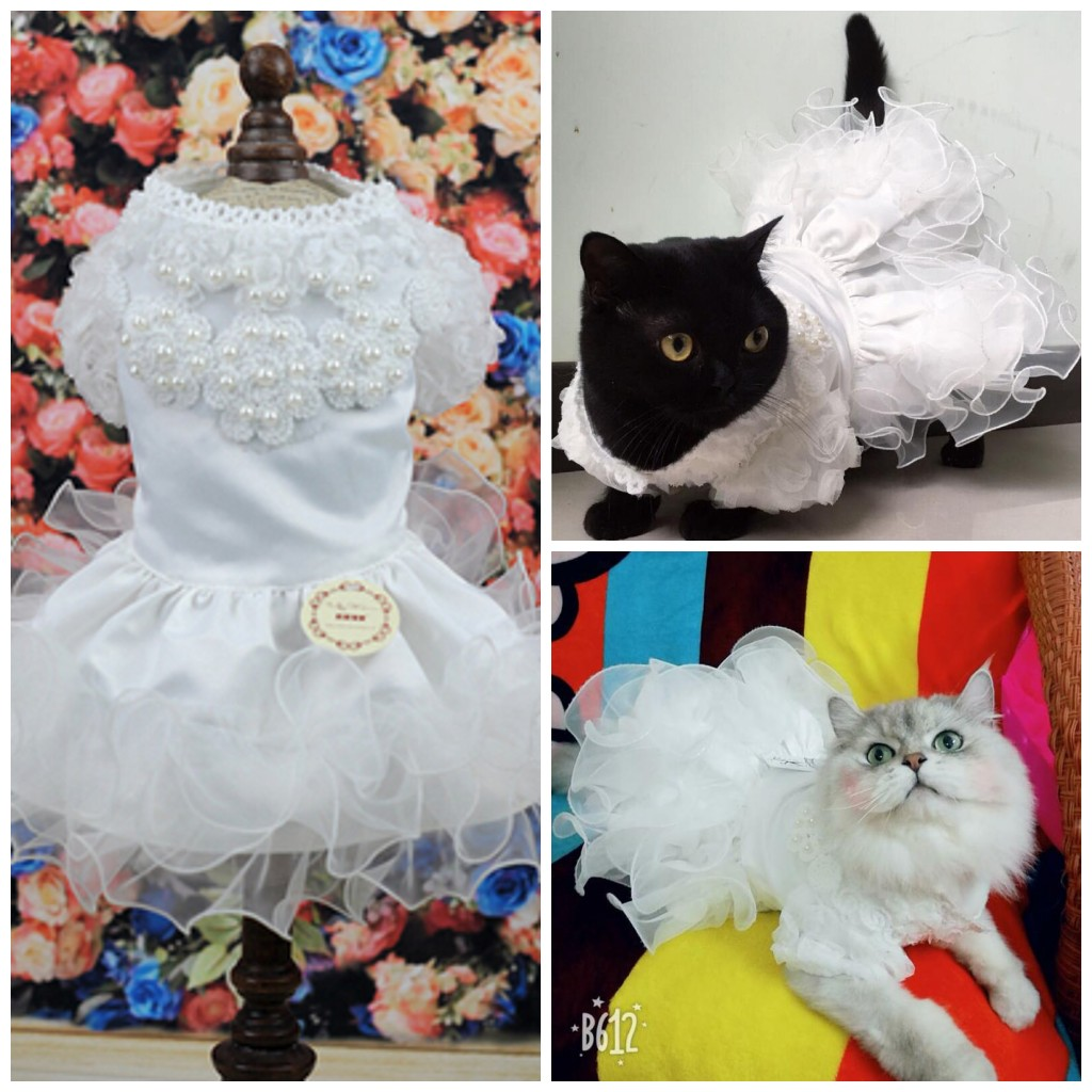 Gaun Pengantin Kucing kecil Putri Anjing Kucing Rok Pakaian Hewan - Produk hewan peliharaan - Foto 2