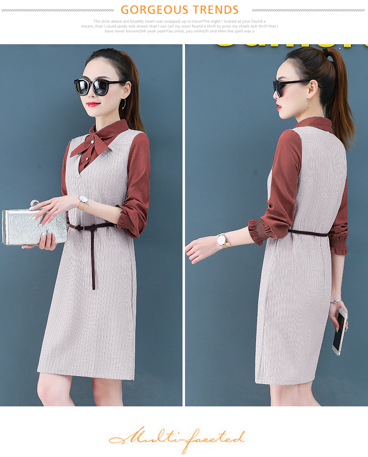 Render a dress in female new spring in the spring and autumn qiu dong fake two piece suit dress long 16