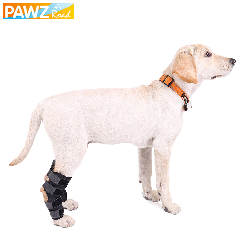 Knee Brace For Dog 1 Pcs Rear Leg Hock ACL CCL Therapeutic Protector Safety Joint Knee Brace Prevent Arthritis Injury Pet Supply