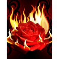 New 5D round Diamond Painting Cross Stitch Red rose & fire Kit DIY Set Embroidery diamond mosaic Rhinestone Home Decor HL486