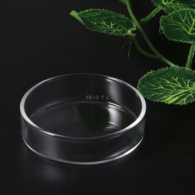 Pet Products Fish & Aquatic Supplies Clear Glass Shrimp Food Round Dishes Small Fish Feeding Bowl Ornamental Supplies