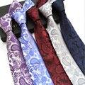 Factory Seller Men's Classic vintage Tie 100% Silk 8cm Paisley cravatta Ties Man Fashion Necktie for Bridegroom Wedding Party