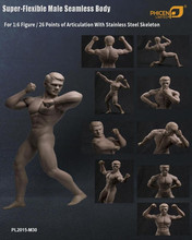 1/6 Phicen Super Flexible Muscle Male Body Seamless Stainless steel No Head Nude PL2015-M30
