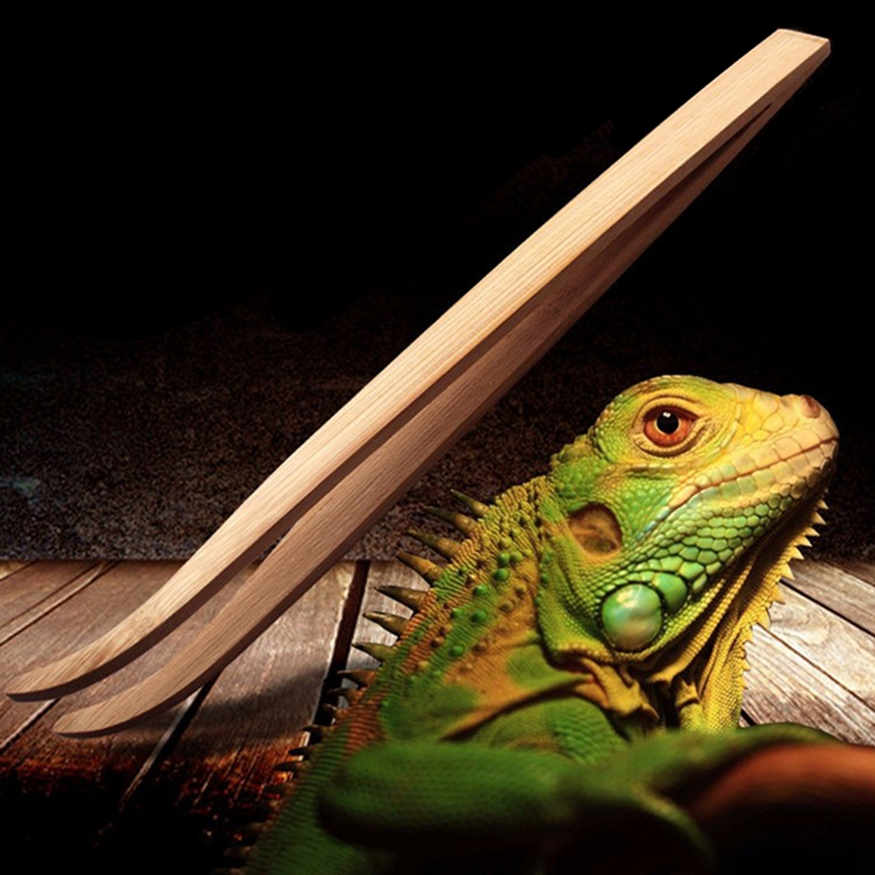 Aquarium Live Plant Tank Cleaning Tools Angled Reptile Feeding Tongs Tweezers 28cm Bamboo Eco Friendly Feeding