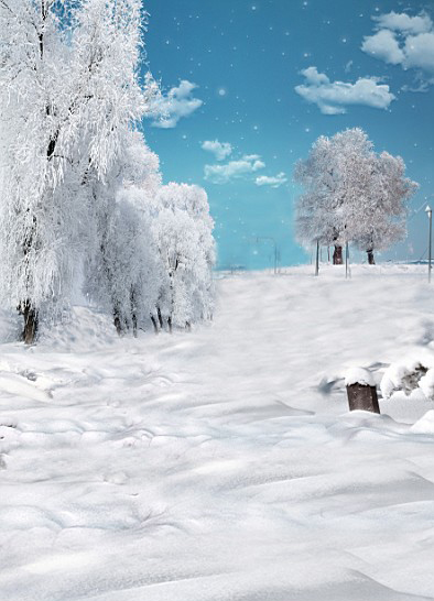 300Cm*200Cm(About 10Ft*6.5Ft) Backgrounds Tree Branches Covered With Snow White Snowflakes Book Photography  Photo Lk 1332 300cm 200cm about 10ft 6 5ft backgrounds wood frame windows papered photography backdrops photo lk 1583