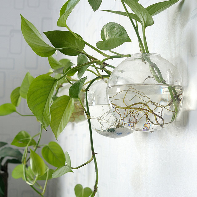 Glass Flower Pots Transparent Living Room Simple Modern Wall Hanging