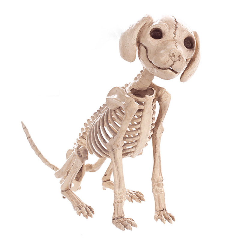 Halloween Decoration Props Animals Skeleton Mouse Dog Cat Skull Bone Ornaments Hallowmas Horror Haunted House Party Decoration (2)