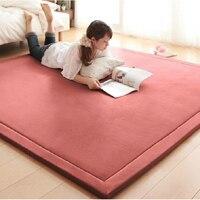 2CM Thick Coral Fleece Mat Carpet 180 200 2CM Tatami Tea Table Manually Bedroom Carpet Rectangle