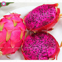 200pcs Pitaya Bonsai Seeds Dwarf dragon fruit tree seeds Delicious juicy edible plants for home garden potted Best packaging
