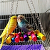 Parrot wooden Chewing Toy