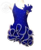 New 2016 Adult Children Latin Dance Dress Women Girl Lady Cha Cha Rumba Samba Tango Ballroom