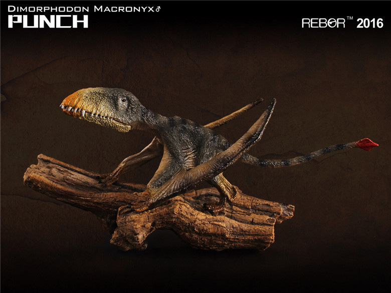 Dinosaurs Model Pterosaur Dimorphodon Classic Toys For Boys With Retail Box