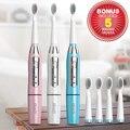 Marca seago sonic cepillo de dientes eléctrico cepillo de dientes profesional cepillo de dientes eléctrico + 5 cabezales de repuesto pilas sg-610