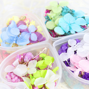 Image 2 - 1 caixa de unhas 3d decoração diy misturado flores secas adorável cinco pétalas flor adesivos para unhas arte decoração beleza