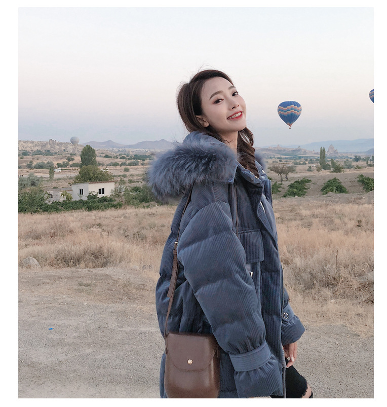 High-Quality-2018-Winter-New-Collection-Women-Hooded-Long-Down-Coat-Female-Winter-Warm-Thick-Down (1)