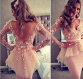 2016 Flawless Myriam Fares V-Neck Knee Length Sheer Long Sleeves Sexy V Back Applique Pink Celebrity Dresses Party Dress TY1433