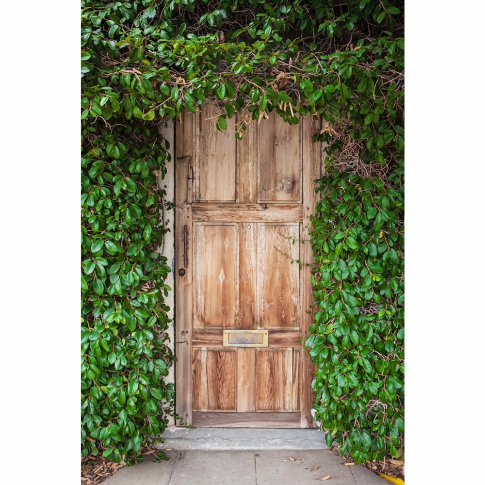 Thin fabric cloth Printed photography background old wood door backdrop F-2584