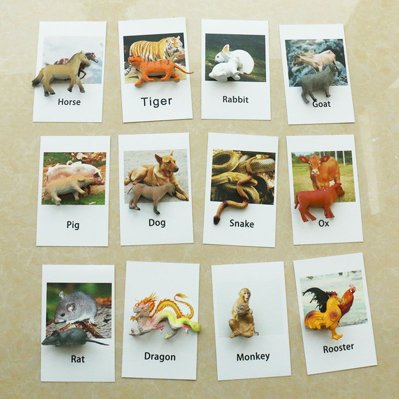 Montessori Toys For 3 Year Olds Zodiac Montessori Cards Educational Early Learning Toys For Children Birthday Gift Mj1264h To Produce An Effect Toward Clear Vision Home