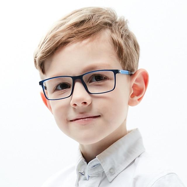 Flexible Optical Glasses