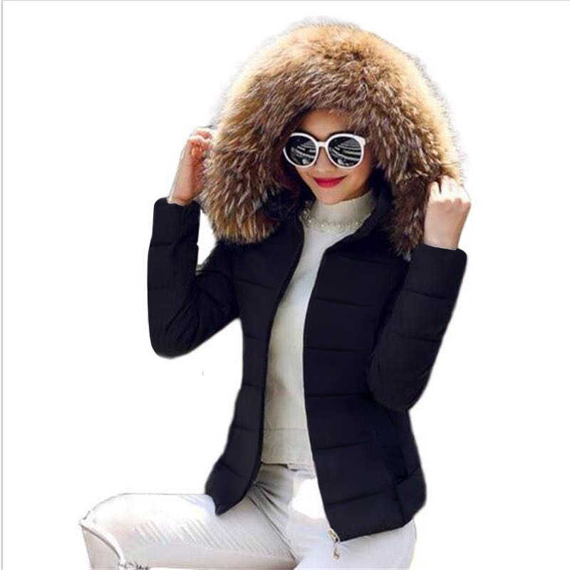 Nep Bont Kraag Winter Vrouwelijke Jas Nieuwe 2019 Mode Winter Jas Vrouwen Parka Warm Hooded Winter Jas Vrouwen Plus size s-5XL