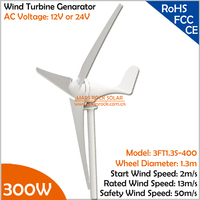 Economy 2m/s low start wind speed AC12V/24V Three Phase 300W Wind Turbine Generator with 3 blades or 5 blades