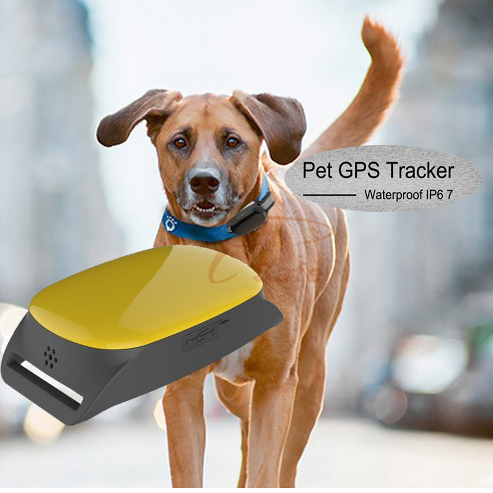 Free App for IOS Android Cheap GPS Tracker Mini GSM GPRS Personal Locator Pet Tracking Device For Dogs Pets Cats 2016 new tkstar bar mini personal trackerreal time tracking support android and ios platform free web application free shipping