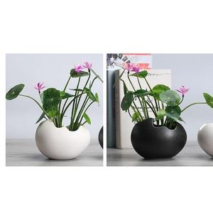Image 4 - 2x saksı dayanıklı seramik tutucu konteyner çiçekler etli bitki