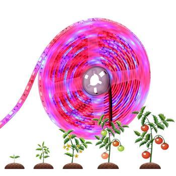 5050 Светодиодная лента для растений Светодиодная лампа для выращивания Фито лампа для растений фитолимп для рассады Фито лампа для выращива...