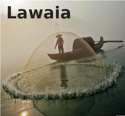 Lawaia Old Salt Cast Net China Nylon 8m Fishing Net Super Pro Cast Net Rubber Nylon Cast Net Deep Hole Cast Net 4 8m 8ft cast net saltwater bait casting net strong nylon line with sinker