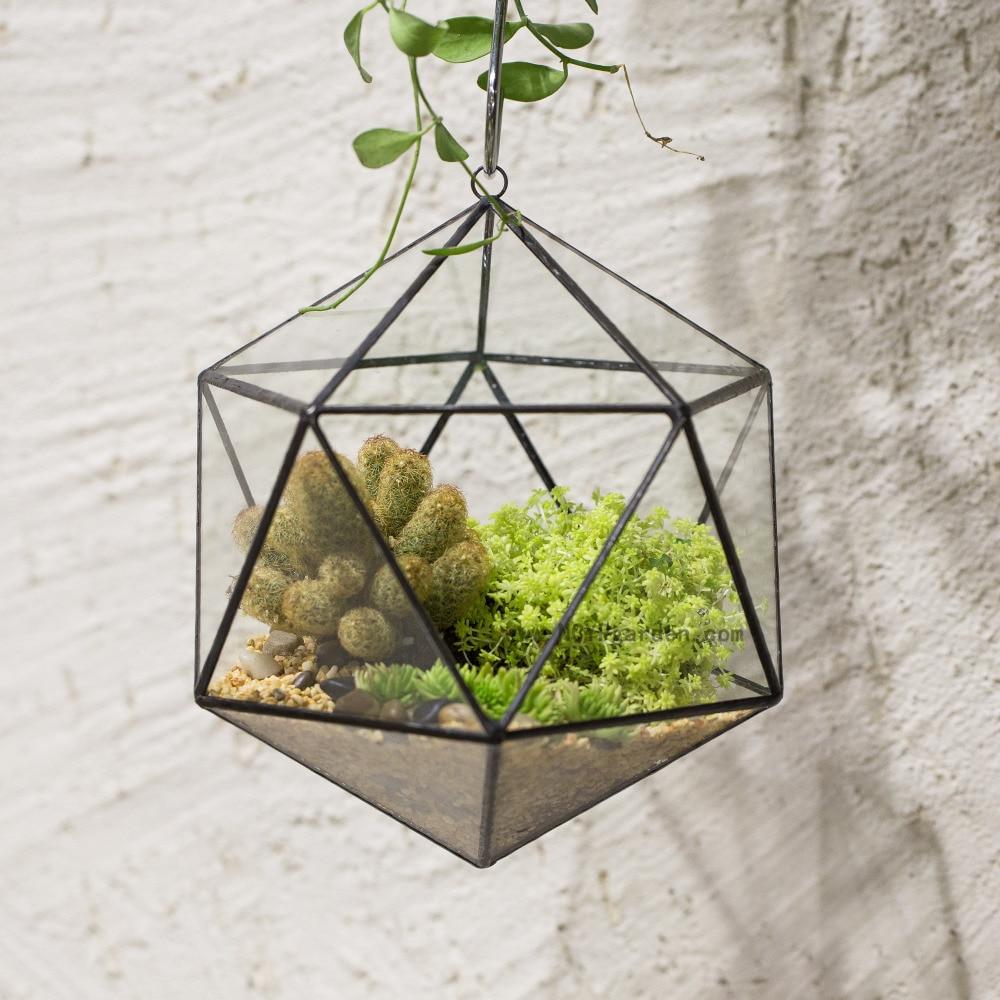 Moderni taiteellinen kirkas Icosahedron kolmikulmainen lasi geometrinen terraario mehikas Fern Moss Plant Terrarium Bonsai kukka potin