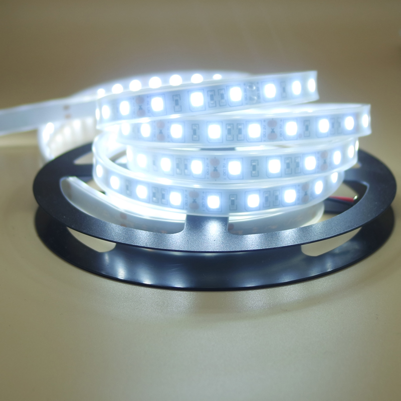 Led Flexible Strip Light 5050 Silicon Tube Waterproof Ip67 12V RGB White Warm White Red Blue Green Tape Rope Lamp 1/2/3/4/5 M