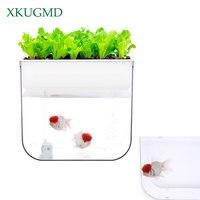 Peixe interior Vegetal Plantio de Simbiose Rega Automática Vaso de Flores Tanque Do Aquário Bomba de Oxigênio Poluição-livre Recipiente de Peixe