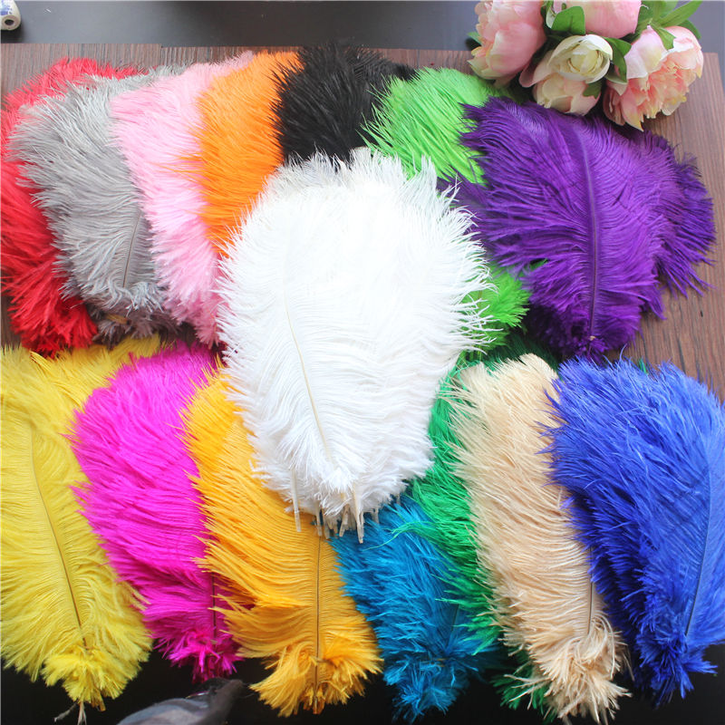 Free shipping / 10 - PCS full natural ostrich feather embellished with feathered decoration/20-25cm