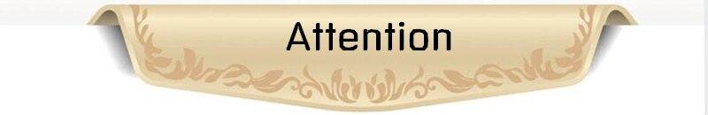 1 5604 - ttention
