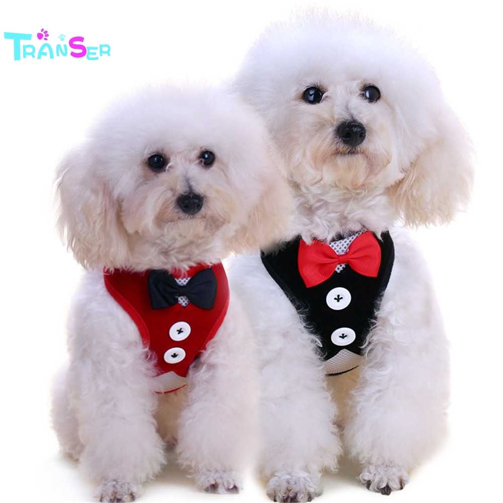 2019 ランサークリエイティブホット! 犬の鎖の首輪ペット Puppt 猫紳士ベスト服牽引ロープ DogsDrop 無料 N2 m30