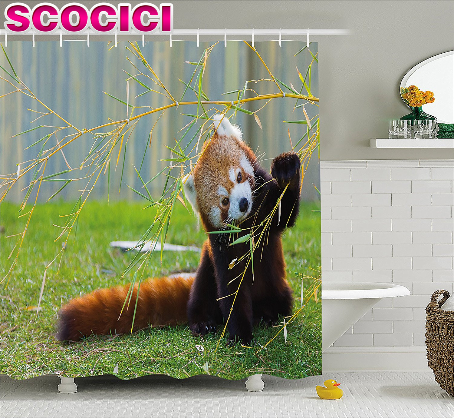 Wildlife Decor Shower Curtain Cute Red Panda On The Field Playing With Bamboo Branches Native Himalayas