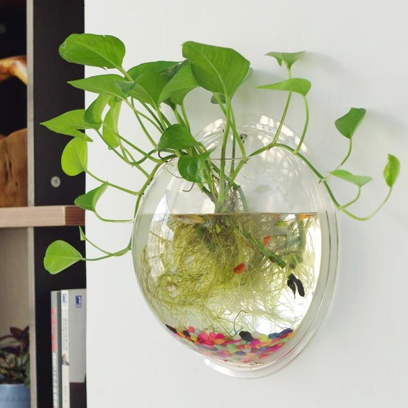 O roselif round wall hydroponic aquarium vase round fish for Vase aquarium rond