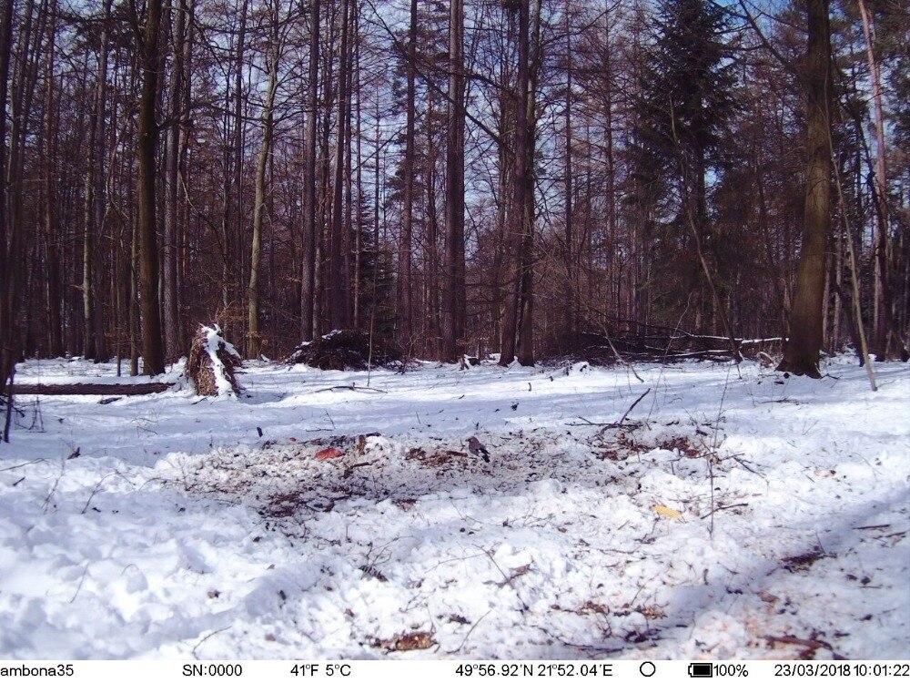 Hunting Camera GPS 4G Scout Guard Night Vision Hunter Camera Chasse Infrared Game Wild Trail Foto Traps Camara De Caza Chasse (8)