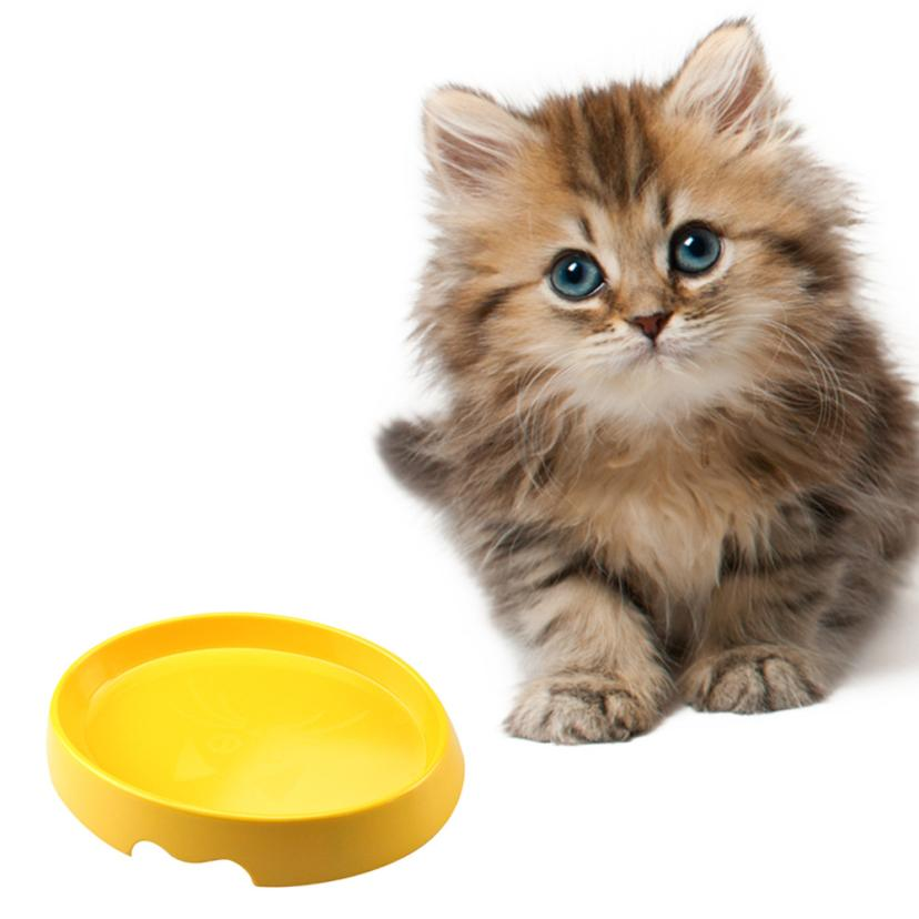 Pet Cat Puppy Plastic Food Feeding Water Drinking Diagonal Bowl Candy Color 20.32*15*4.8CM