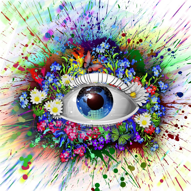 magic colors eyes flowers psychedelic artwork SH37 living room home wall modern art decor wood frame poster