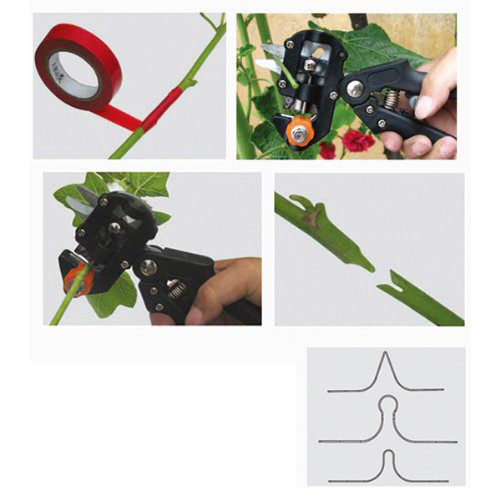 Promotion! Black Professional nursery grafting tool pruner 2 extra blades free grafting tape