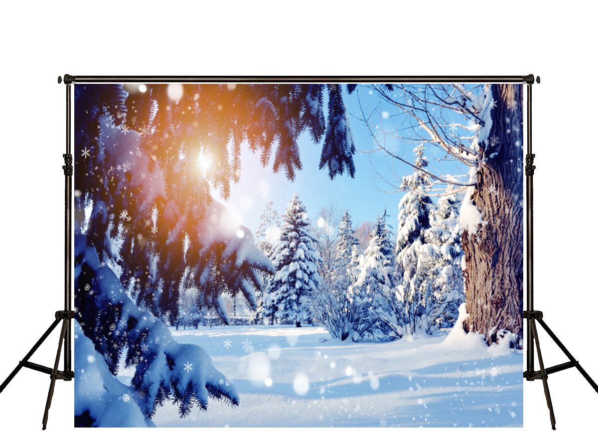 Kate Winter Snow Scenery Backdrops Photography Forest Sunset Photo Backgrounds Fotografia White Spot For Shoot Of Child