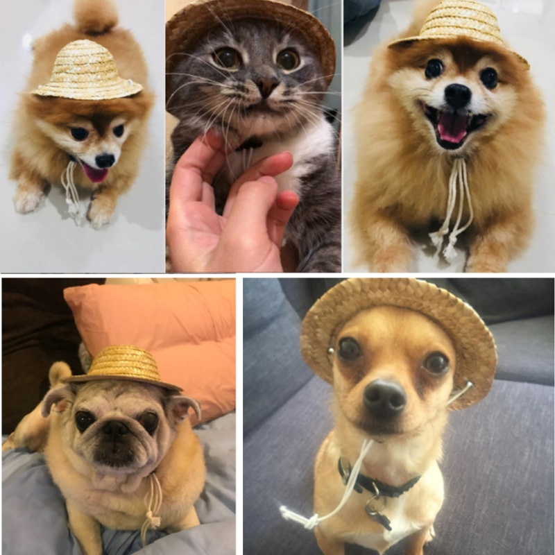2019 New Pet Sombrero Hat Dog Cat Hat Small Pet Dog Outdoor Accessories Hiking Pet Products Small/Large Dogs Hats
