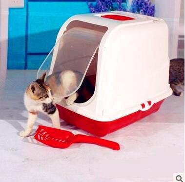 кошачьих туалетов продукты