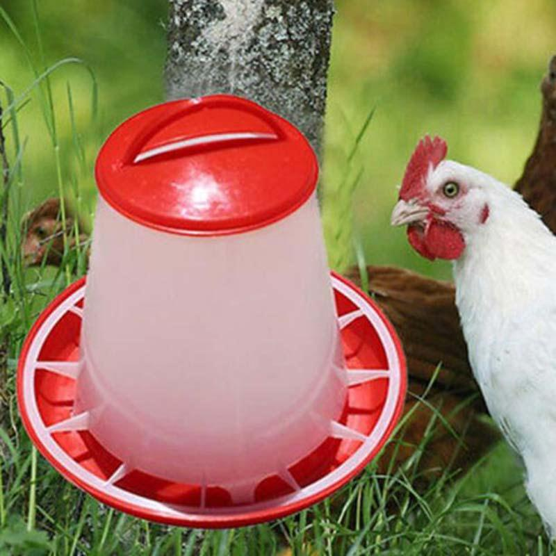 Plastic Drinkers For Chicken Poultry Chick Hen Drinker Food Feeder Waterer font b Pet b font