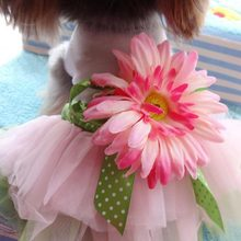Sunflower Dress for Dog Skirt Pet Princess Cat Dresses Clothes for Samll Dogs Puppy Wedding Pink Girl Female Dogs Clothing