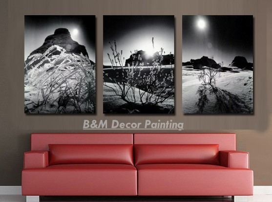 Hot selling free shipping canvas 3 pieces wall art modern art home decoration black white