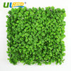 12 Pieces 50cm X 50cm Artificial Boxwood Hedge Mat UV Proof Privacy Fence Screen Plastic Garden