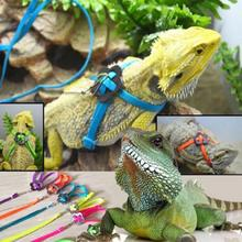 Pet  Product Lizard Traction Rope Parrot Pull Rope Adjustable Soft Bird Anti-bite Harness Leash For Small Pet