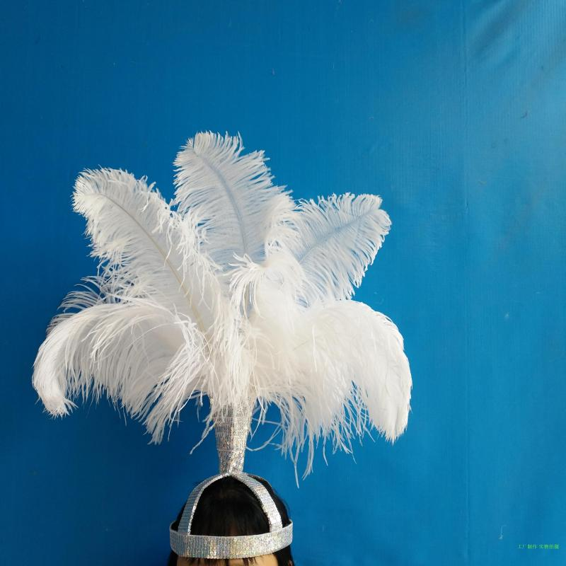 Vic model catwalk photography creation samba dance stage lead dance performance ostrich feather headdress